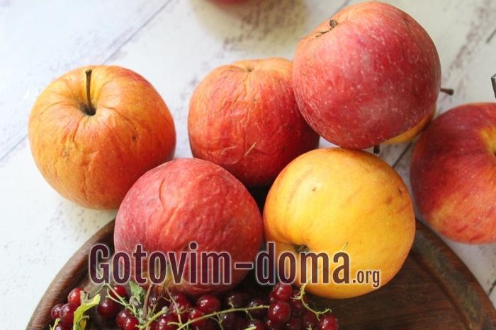 Кислые сорта яблок для пастилы в сушилке
